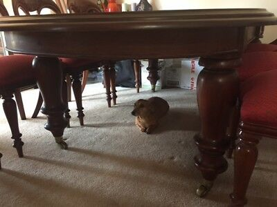Antique 10 foot table with turned legs and 2 leaves with 8 chairs