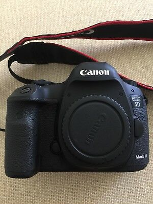 Canon 5D Mark Iii With 24-105mm F4l
