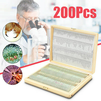200x Professional Glass Prepared Microscope Slides Plant Animal Insect Specimen