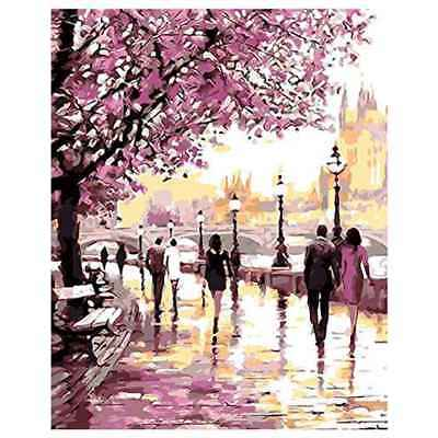DIY Oil Painting Paint by Numbers Cherry Blossoms Park Drawing With Brushes P3E2