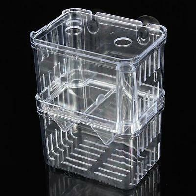 Clear Acrylic Fish Breeding Isolation Aquarium Accessories Incubator Box new
