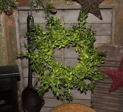 "Primitive 9"" Green Lemon Beauty Artificial Plant Fake Foliage Wreath Floral Ring"