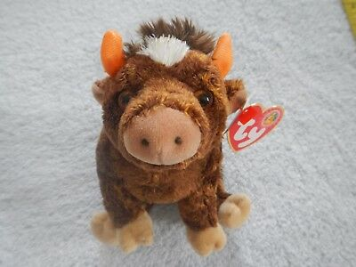 JERSEY THE COW - TY BEANIE BABY of the MONTH  JANUARY 2004 - BBOM MEMBERS ONLY