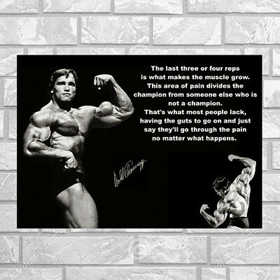 Conquer Arnold Schwarzenegger Bodybuilding Motivational Quote Silk Poster  002