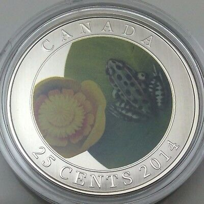 2014 Twenty Five 25 Cents RCM Water Lily Frog Canada Not In Case C954