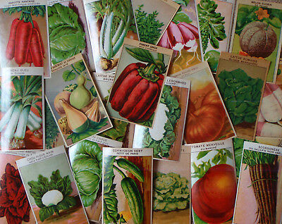 72 different French vegetable Seed Packet Labels 1920's COLOR LITHOGRAPHS