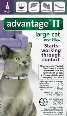 Advantage II for Large Cats Over 9 Lbs. Flea & Tick SINGLE DOSE ONE MONTH SUPPLY