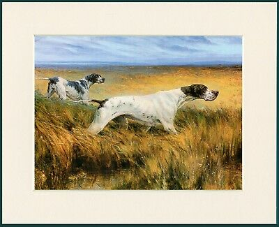 Pointer Two Dogs Great Dog Print Mounted Ready To Frame