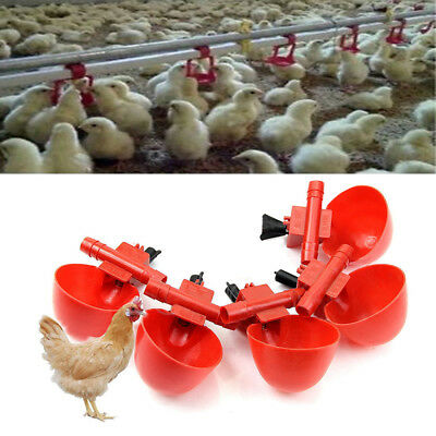 5 Pack Poultry Water Drinking Cups- Plastic Chicken Hen Automatic Drinker BH