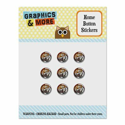 Fierce Tiger Home Button Stickers Fit Apple iPhone