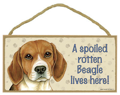 """Spoiled Rotten Beagle Lives Here Sign Plaque Dog  10"""" x 5"""" pet lovers gift"""