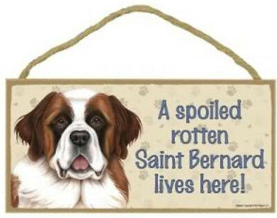 "Spoiled Rotten Saint Bernard Lives Here Sign Plaque Dog 10"" x 5"" pet lovers gift"
