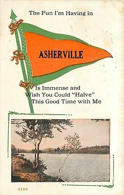 Asherville Kansas~Immense Fun I'm Having Here~River View~1914 Pennant Postcard