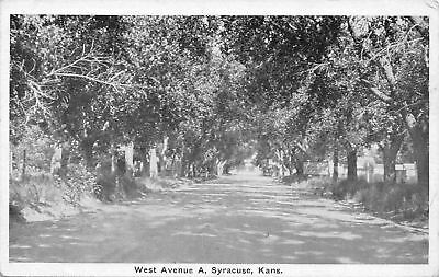 Syracuse Kansas~Shady Tree-Line West Avenue A~1920s Postcard