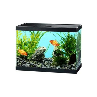 Ciano Aqua 15 Glass Coldwater Aquarium Includes Filter - BLACK