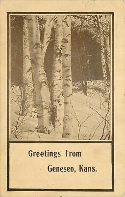Geneseo Kansas~Sepia Tone Postcard: Birch Tree in a Snowy Forest Greetings~1914