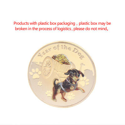 Lucky Dog Puppy Golden Commemorative Challenge Coin Souvenir Art Collection Gift