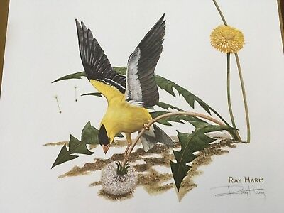 Ray Harm ( Gold Finch ) autographed lithograph print Frame House Gallery