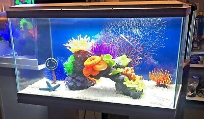 Ciano Aqua 60 2ft LED Tropical Glass Aquarium - Inc Filter Lights Heater ~  58L