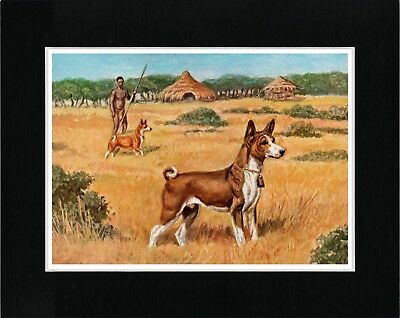 Basenji In African Scene Charming Vintage Style Dog Print Ready Matted
