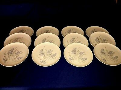 """12 SYRACUSE Carefree China BLUE GRASS ~ 10 1/8"""" Dinner Plates ~ Excellent"""