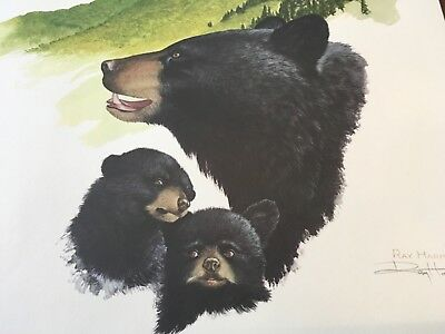 Ray Harm ( Black Bear ) autographed lithograph print# 545 Frame House Gallery