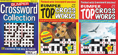 Crossword Puzzle Book - 3 Book Set - 379 Puzzles - Set 161