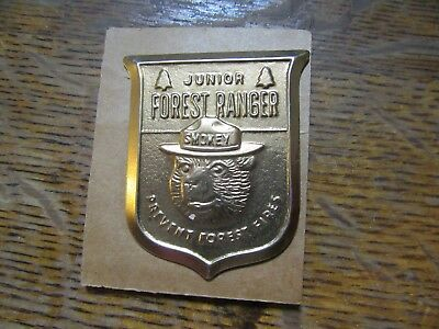 "Vintage Brass ""Junior Forest Ranger Prevent Forest Fires"" Smokey Bear Pin VNC"