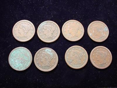 NobleSpirit NO RESERVE Desirable GROUP LARGE CENTS Higher Grades AS FOUND