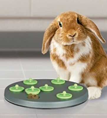 62812 Trixie Plastic Play and Snack Board - Small Pet Rabbit Toy (AND BIRD)