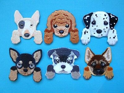 Dog Breed Embroidered Patches Applique Iron On Sew Patch Bullie Cockapoo GSD Chi