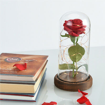 Beauty and the Beast Red Silk Rose in a Glass Dome Valentine's Gift