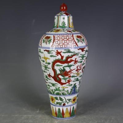 Fine Chinese Ming Dynasty Five Colours Porcelain Dragon Mei Vase