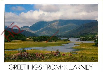 Picture Postcard- Greetings From Killarney