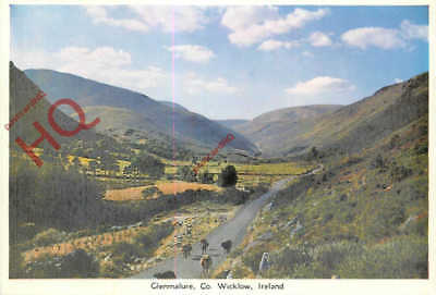 Picture Postcard: Glenmalure, Co. Wicklow