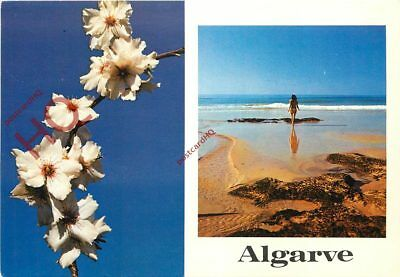 Picture Postcard:-Algarve (Multiview) Flower And Beach