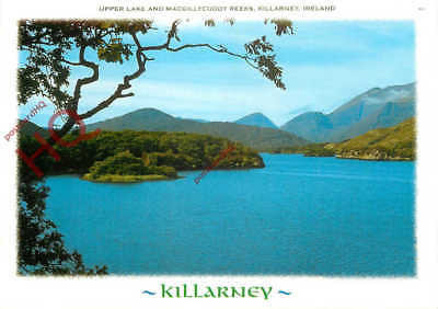 Picture Postcard; Killarney, Upper Lake And Macgillycuddy Reeks