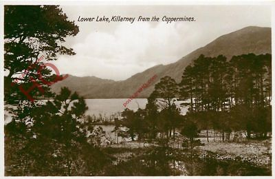 Picture Postcard-:Killarney, Lower Lake, From The Coppermines