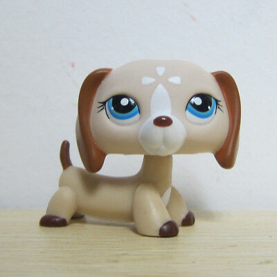 Littlest Pet Shop Collection LPS Figure #1491 Blue Eye Dachshund Dog Toy A1
