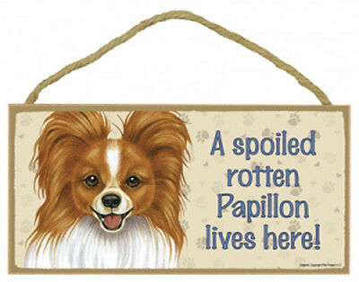 "Spoiled Rotten Papillon Lives Here Sign Plaque Dog red & white 10"" x 5"" gift pet"