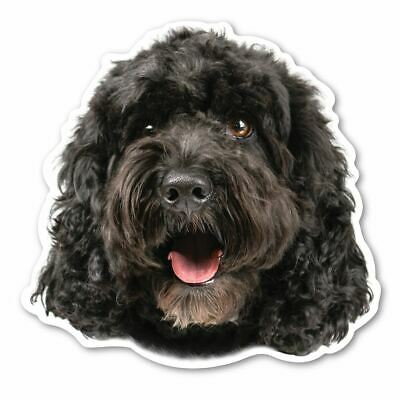 (Black) Cockapoo Magnet