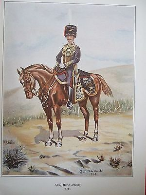 Military Print-Captain Of Royal Horse Artillery 1893 By R J Macdonald
