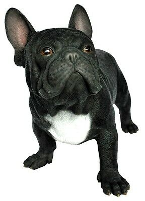 French Bull Dog  Black  Life Size Realistic Bulldog Statue Home Garden Decor