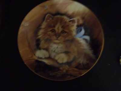 CUDDLE ME CAT PLATE by KATHLEEN SMITH