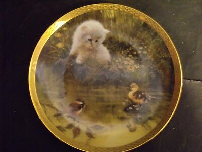 DUCK POND DILEMMA CAT PLATE by GIORDANO