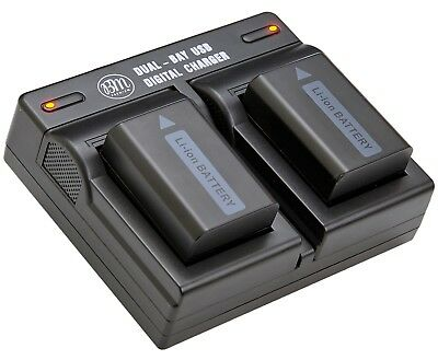 BM Premium Battery (2-Pack) and Dual Charger for Sony NP-FW50