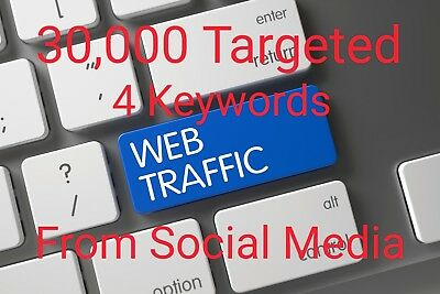 30,000 Targeted 4 Keywords Real Human Web Traffic With Live Stats