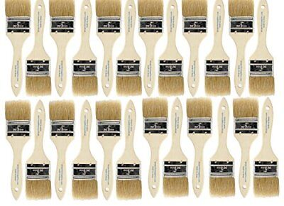 24pk - 1.5 inch Chip Paint Brushes for Paint StainsVarnishesGluesGesso