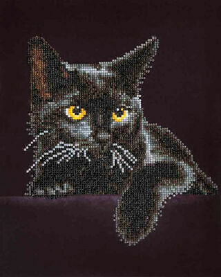 Diamond Dotz Embroidery Facet Art Kit, 5D Diamond Art, Intermediate Midnight Cat
