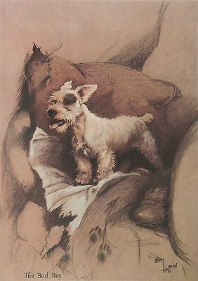 "SEALYHAM TERRIER DOG ART PRINT - ""Bad Boy"" - by CECIL ALDIN"